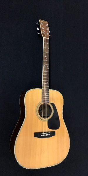 Đàn guitar acoustic MORRIS MD-510