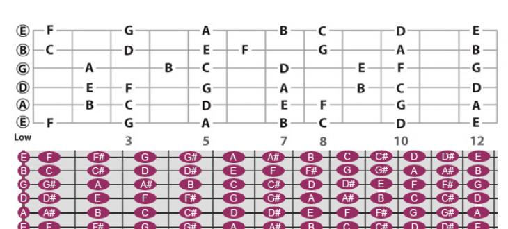 Cách học nốt nhạc guitar nhanh chóng cho người mới bắt đầu