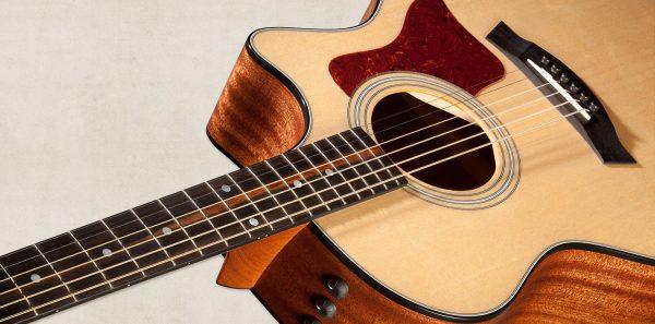 Đàn guitar acoustic Taylor