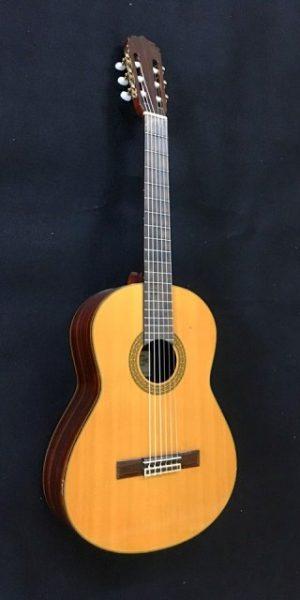 aria ak 600 3 300x600 - Guitar Thùng
